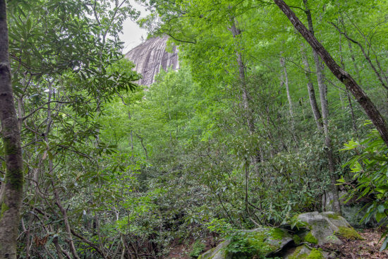 Real Estate in Cashiers NC, Lonesome Valley, Land and Homes for Sale